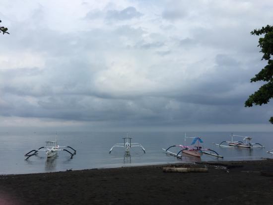 Aneka Lovina Villas & Spa: pantai
