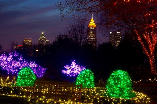 Picture of atlanta botanical garden atlanta tripadvisor for Botanical gardens atlanta lights