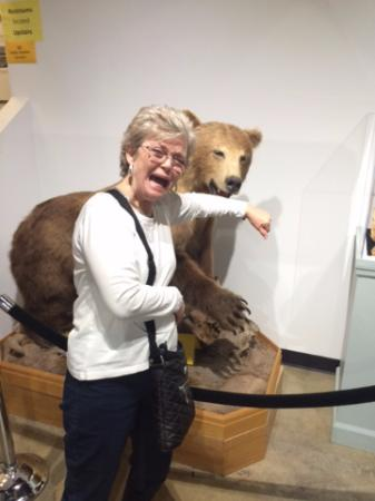 Georgia Museum of Natural History: Grizzly after my wife