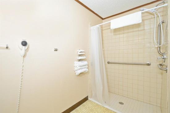 أميريكاز بست فاليو إن: Grab Bars In Bathroom