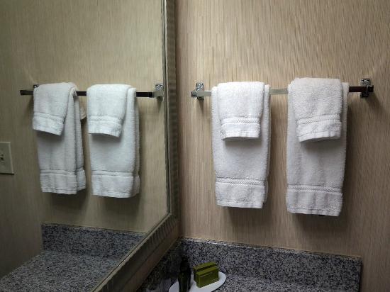 Monmouth Junction, NJ: Bathroom