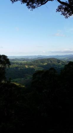 Upper Crystal Creek, Australia: View from the Scenic lookout. Quite an uphill walk!