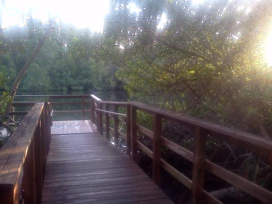 Greynolds Park: a floating deck, cool. and the view is spectacular