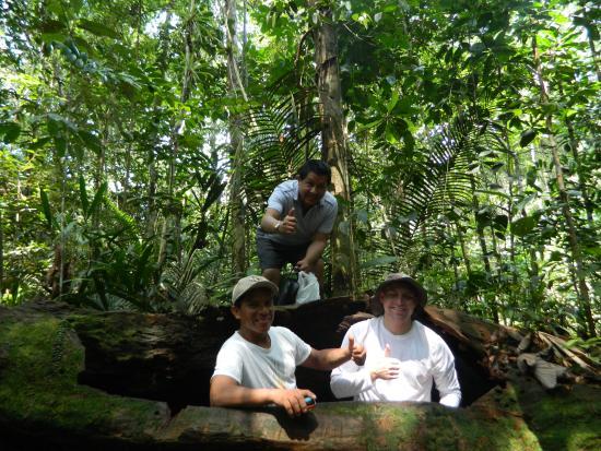 Amazonia Expeditions' Tahuayo Lodge: Bat cave