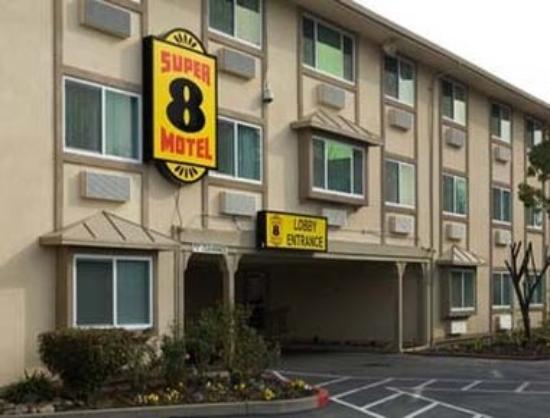 Welcome to Motel 8 – Luxury Hotel in Maricopa at Budget Price! Stay with us when visiting Carrizo Plains to see the beautiful flowers or for great Bird Watching nearby! If you are visiting the Taft area we are the place to stay.