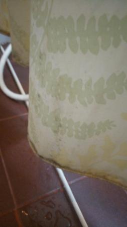 Riverside House: Shower curtain