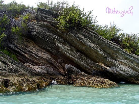Jobson's Cove Beach: The rocks