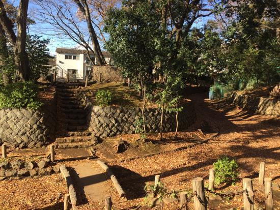 Setagaya Jyoshi Park