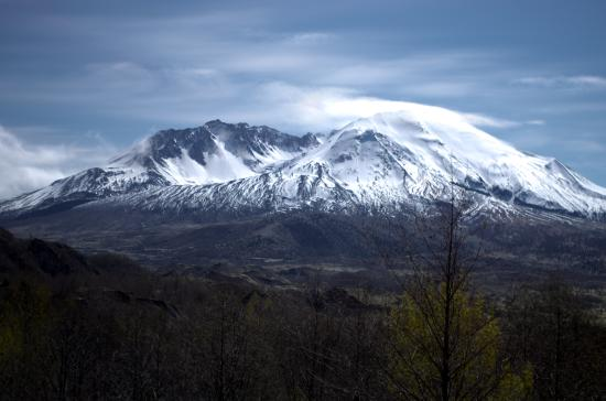 Castle Rock, Waszyngton: Mt St Helens
