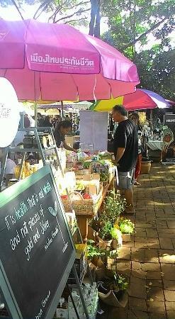 JJ Market Chiang Mai: Lovely Day