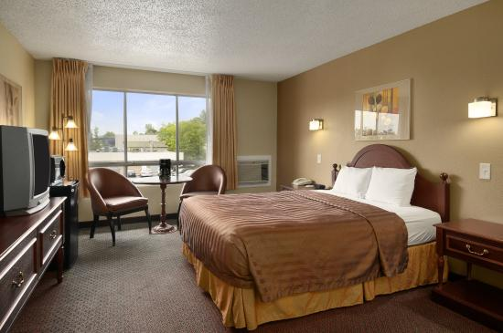 Travelodge Seattle University : Queen Room