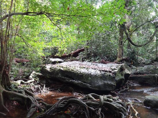 Muang Sakaeo, Thailand: ลานหินริมน้ำตก ไม่ลื่น