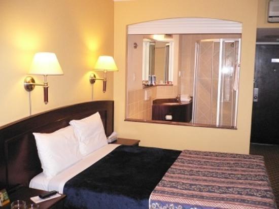 City Lodge Hotel V&A Waterfront: 浴室側