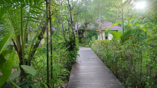 Sunda Resort: path to room