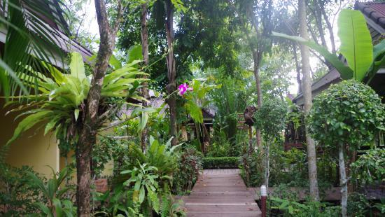 Sunda Resort: path to room