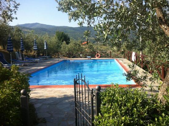 Castiglion Fiorentino, Italia: Pool of Le Capanne