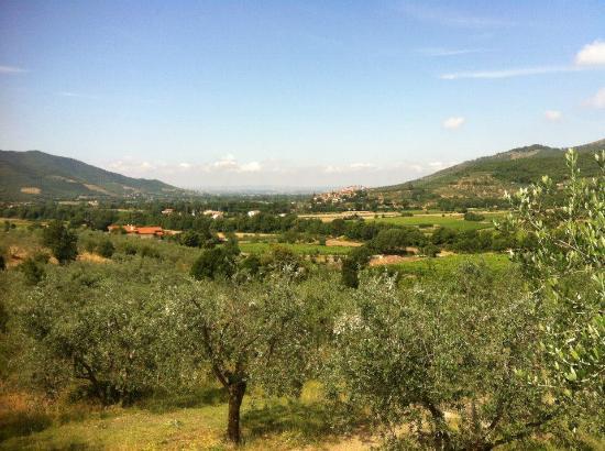 Castiglion Fiorentino, Italia: Landscape from Le Capanne