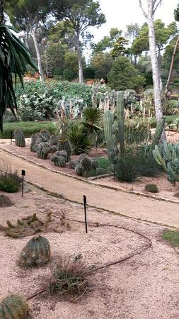 Jardi botanic de cap roig fotograf a de jard n bot nico for Jardin botanico cap roig