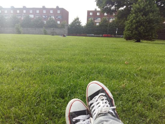 King's Inns: Jardim