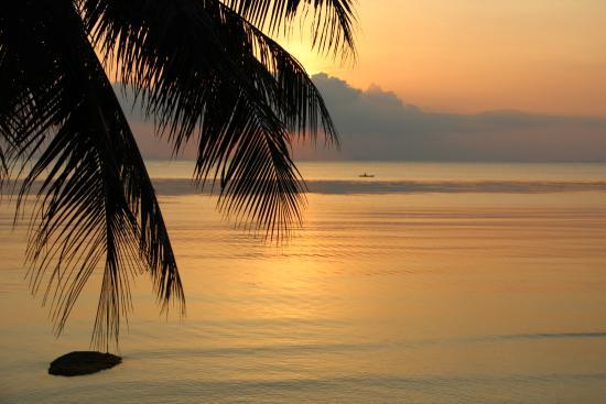 Sunset Cove Resort: Закат