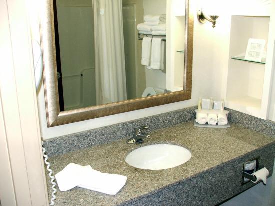 Holiday Inn Express Hotel & Suites - Gadsden: Guest room bath