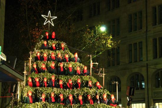 Swissotel Zurich: Sining Christmas Tree