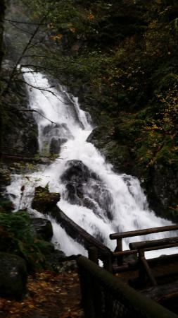 Stevenson, WA: Beautiful waterfall