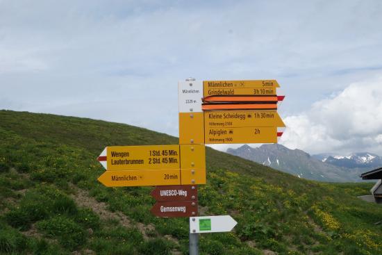 Grindelwald, Suiza: 山頂まで20分とあるけど、ゆっくり歩くともっとかかる