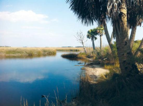 Crawfordville, FL: Area Attraction