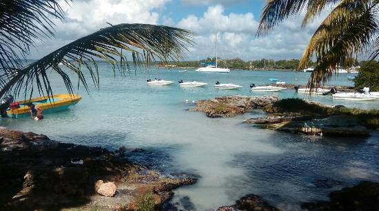 Bayahibe, Dominikanische Republik: IMAG0111_large.jpg