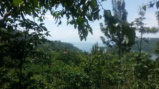 Rwandan Adventures: 20151209_124737_large.jpg