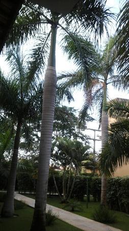 Sunshine Praia Hotel : vista desde la habitacion