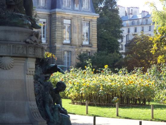 Picture of jardin des plantes paris - Jardin des plantes paris ...