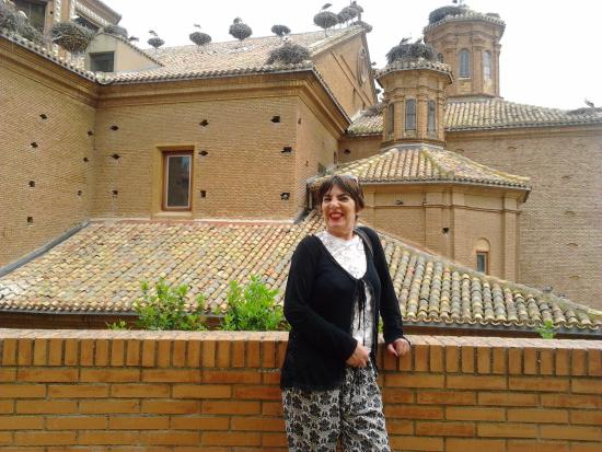 Alfaro, Spanien: Foto con le cicogne