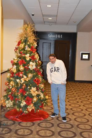 DoubleTree by Hilton - Washington DC - Crystal City: En el hall de ascensores, con el árbol de navidad .