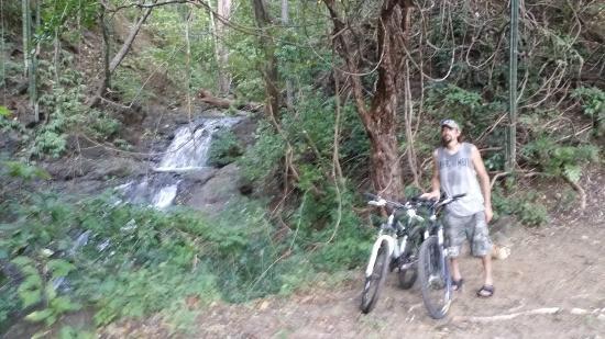 Jungle Howlers Mountain Bike Tours