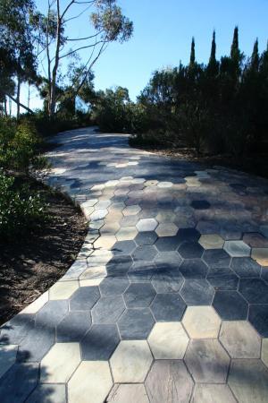 University of California San Diego: The snake walk