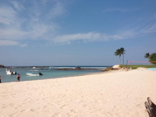 punta mita st regis beach picture of the st regis punta mita rh tripadvisor co uk