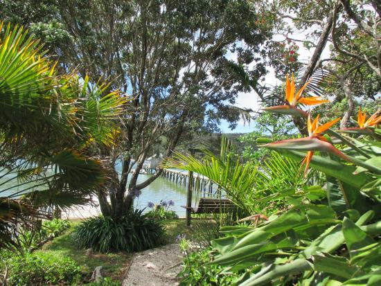 Kawau Lodge: Garden down bottom