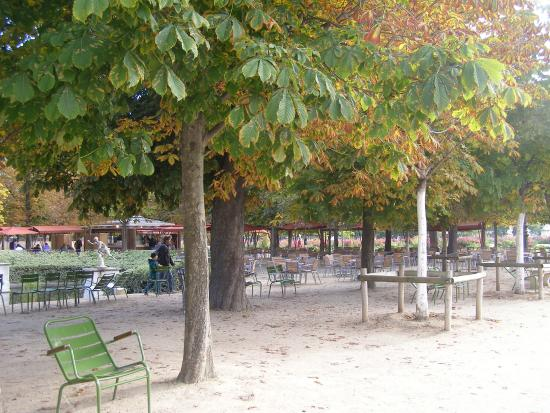 Jardin des tuileries picture of jardin des tuileries for Restaurant jardin ile de france