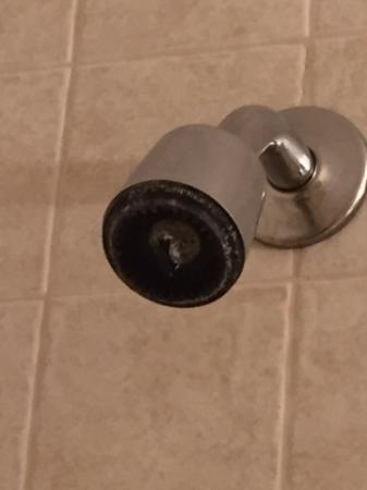 แกลลิคูน, นิวยอร์ก: corroded shower head