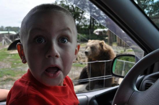Sequim, WA: Ethan after seeing the bear