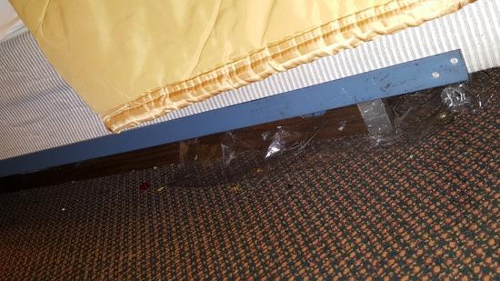 Oxford, Carolina del Norte: Garbage under the bed