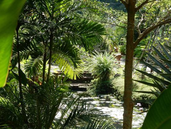 Phu Kamala Suites: jardin