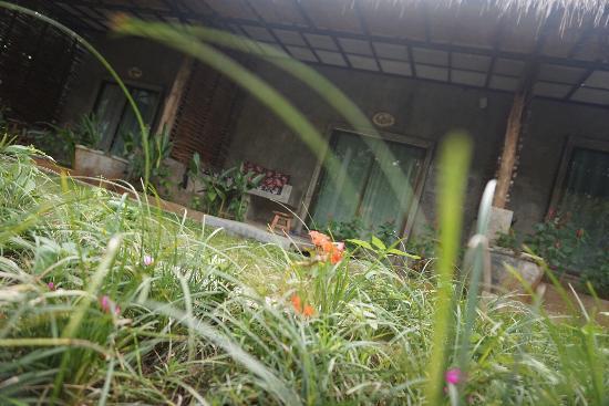 At Nata Chiangmai Chic Jungle: photo1.jpg