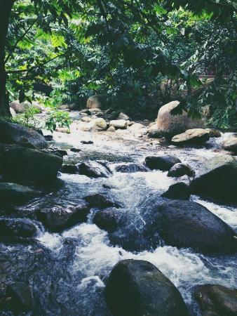 Raub District, มาเลเซีย: waterfall