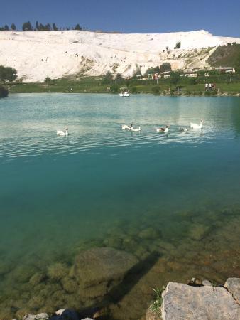 Hierapolis & Pamukkale : The pool at the cotton castles