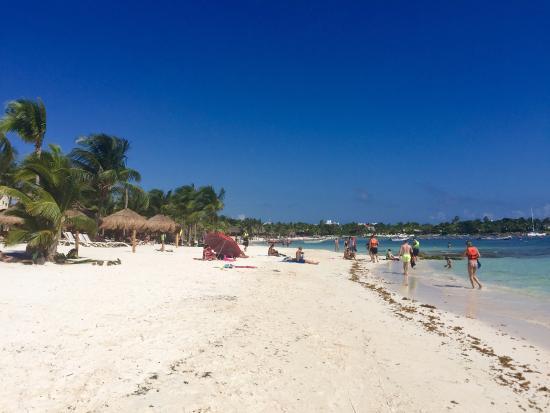 Beach Picture Of Secrets Akumal Riviera Maya Akumal Tripadvisor