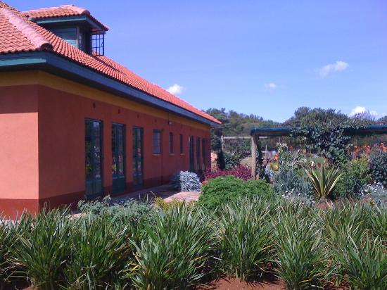 Kokwet Guest House