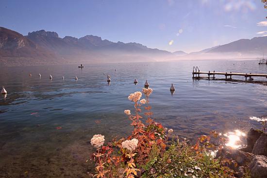 Une matinée d'hiver au bord du Lac